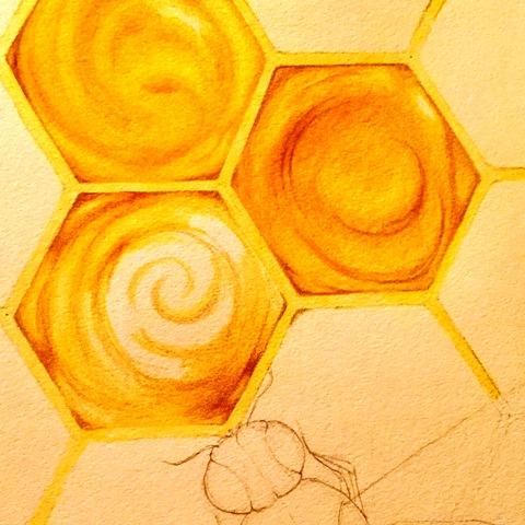 bee drawing in progress 1