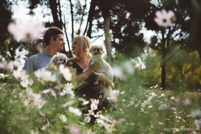 Engagement with dogs in flowers 018