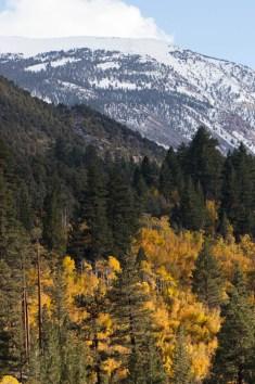Rt 168 west of Bishop, Eastern Sierras, California