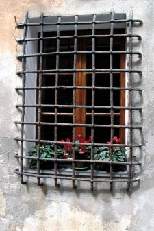Caged Flowers