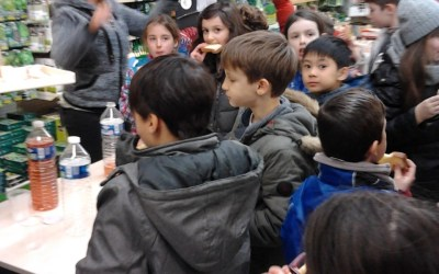 Sortie pédagogique à Gamm Vert le 6 Mars 2017