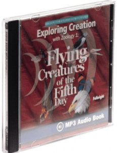zoology flying creatures audio