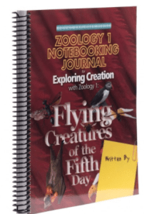 zoology flying creatures journal