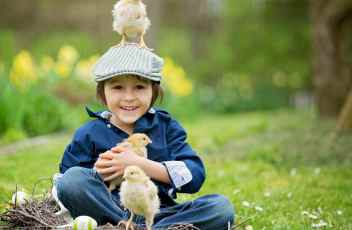 Cute little preschool child, boy, playing with easter eggs and c