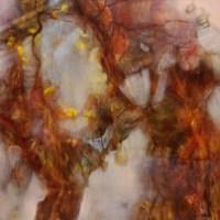 Hiver (huile sur toile 50 x 50 cm)