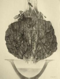 Transformation (crayon sur papier Ingres 32 x 24 cm)