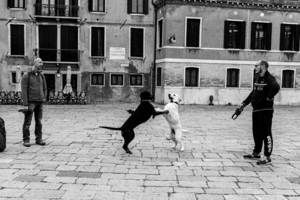 venice-italy-street-photography-2018-hadrien-jean-richard-DSC05075