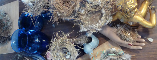 Still-life-cover-w-nests 520w