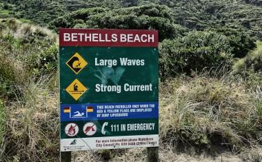 Surfing_Bethells_Beach-New_Zealand_DSC_01_2778_Small