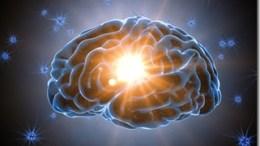 cerveau-gnial