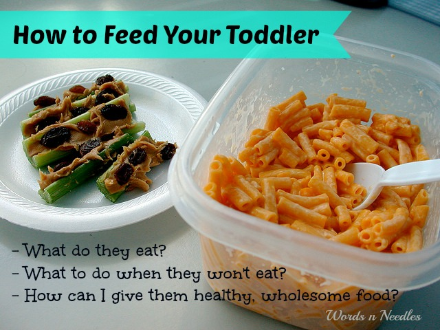 How to feed your toddler wholesome healthy food