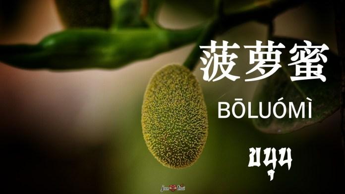 ผลไม้ ภาษาจีน