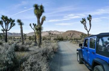 JeepWranglerOutpost.com-jeep-fun-e (19)