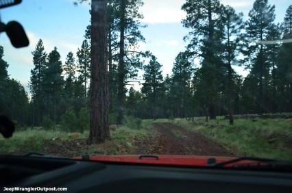 JeepWranglerOutpost.com-jeep-wranglers-set2 (11)