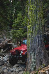 JeepWranglerOutpost.com-jeep-fun-h (39)