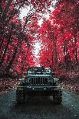 JeepWranglerOutpost.com-wheres-your-jeep-going-to-take-you-today -OO- (8)