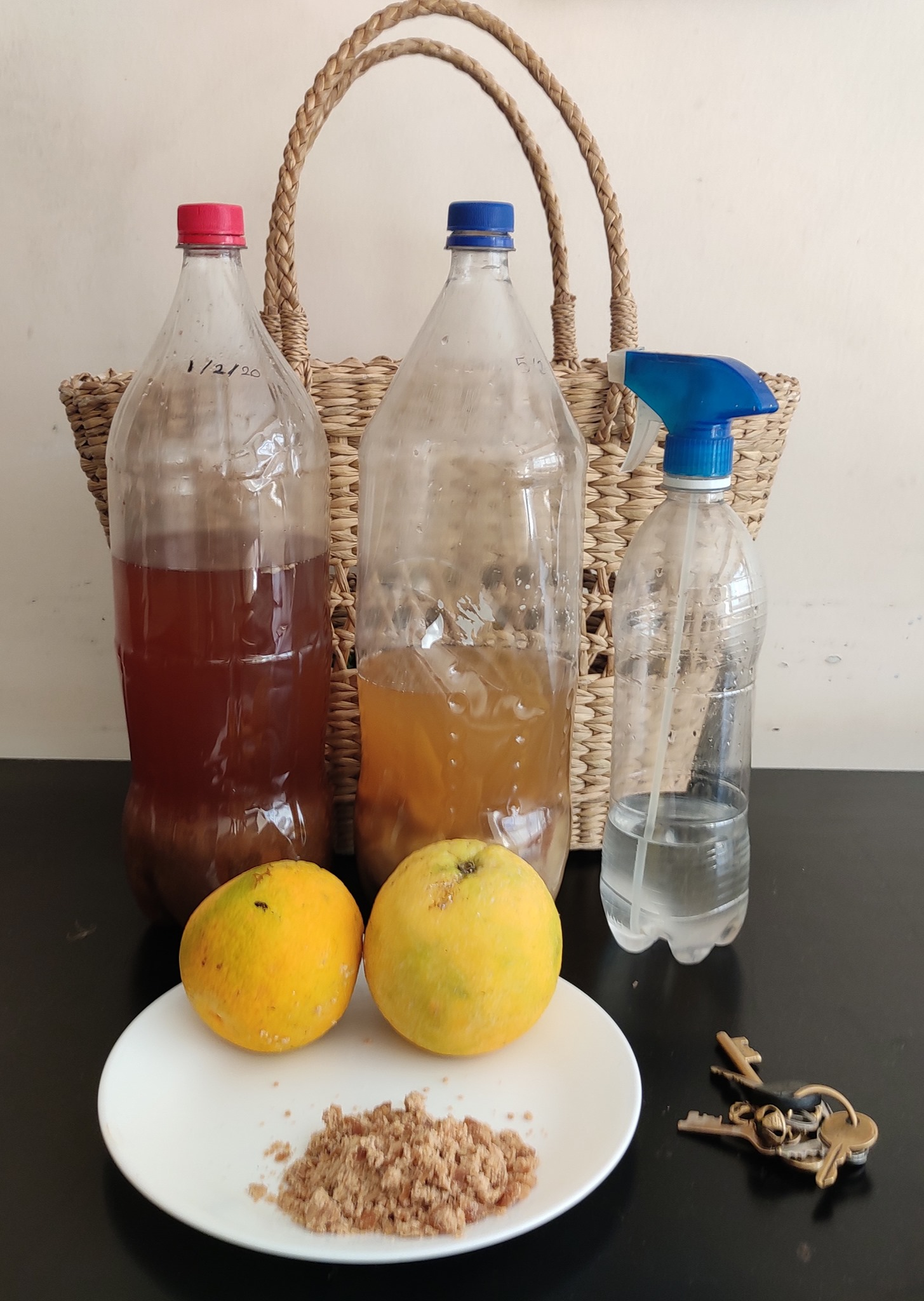 "<span class=""hpt_headertitle"">How Kirti turned fruits and vegetables into cleaners</span>"