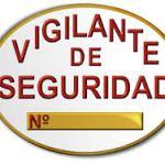 Vigilante de Seguridad: Función, norma e imagen de empresa.