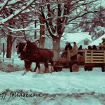 New England Photography of a Christmas sleigh ride