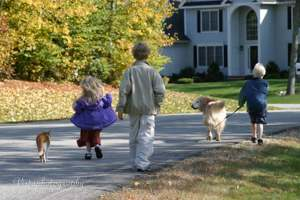 three kids are met by their family pets from the bus stop