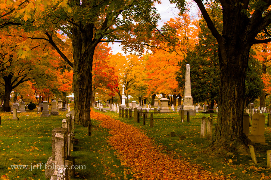 a leave strewn path leads between tall stately maples among tombstones of the Pine Hill Cemetery
