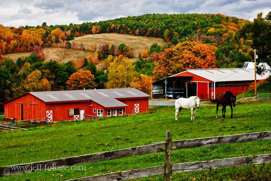 A Vermont horse farm on Jericho street with hills covered in fall's tapestry of autumn colors