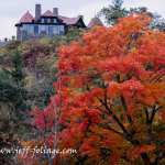 High above Lake Winnipesaukee is the Castle in the clouds. From below you can see the flame orange fall colors with the house rising above it