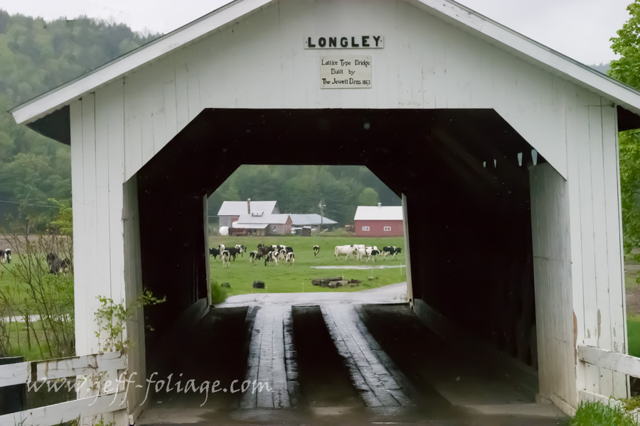 The Longley covered bridge in Montgomery Vt Longley Bridge Road, Montgomery Village. Construction is town lattice built by Sheldon and Savannah Jewett in 1863. Crossing is over the Trout River. The bridge is on Town Highway #4. which is Longley Bridge Road