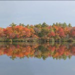 Fall foliage panoramic from a pond in New Hampshire