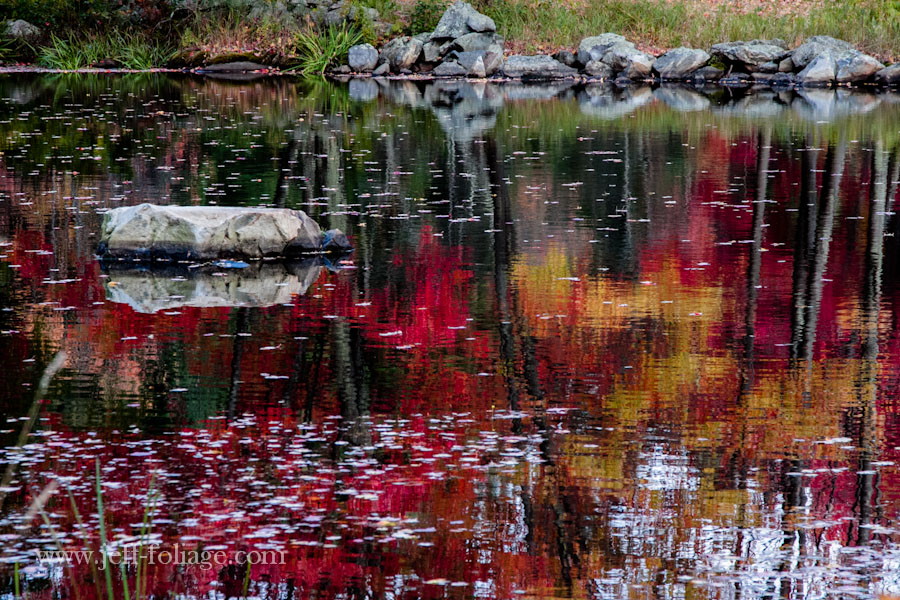 reflections of red and gold on the mill ponds mirror like surface