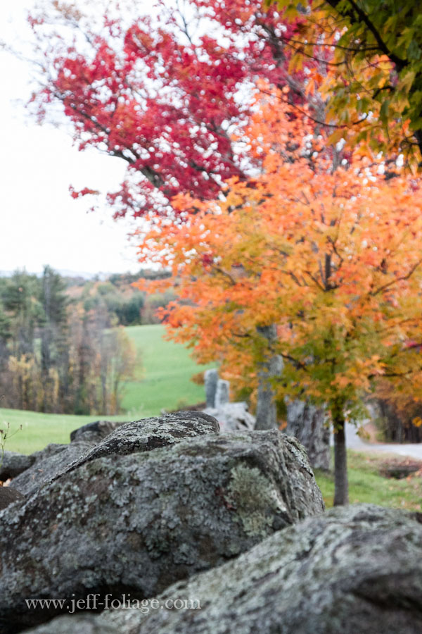 New Hampshire's Shaker village in autumn colors over a roadside rock wall
