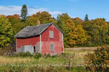 Farm country in Presque Isle, Maine, USA-Susan Cole Kelly