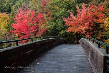 The White Mill was in Burrillville Rhode Island. This bridge is surrounded by red and orange fall foliage