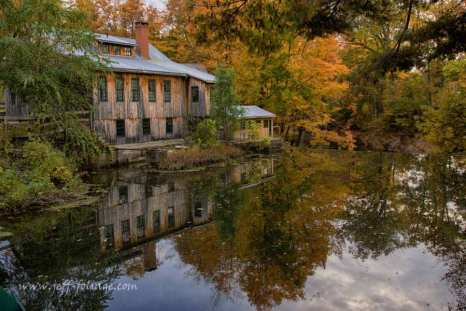 Fall color of yellow and a bit of orange reflect in the mill river
