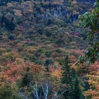 NH Scenic Drive for Autumn