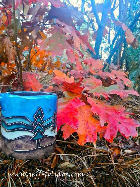 Late autumn foliage colors of a scub oak as I hold my fall foliage mug up for comparison
