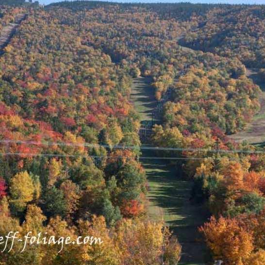 Pinkham Notch fall colors still early