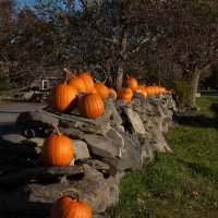 Fall Gallery Rhode Island