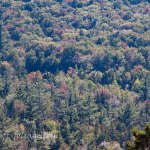 18 Sept 2015 View from the Kanc, #Vistaphotography, #JeffFoliage, #JeffFolger