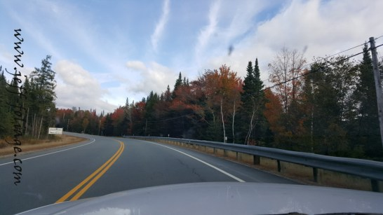 Fall colors Coming down route 302