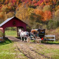 September Comment to Win-New England Fall Foliage