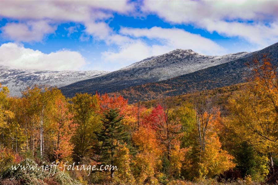 Presidential range covered in ice with fall foliage below.