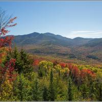 29 Sept fall foliage report