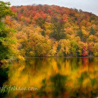 July Fall Foliage Forecast