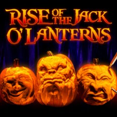 rise-of-the-pumpkins