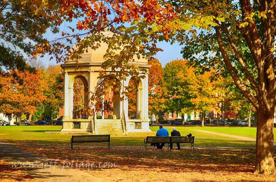New England Photography of fall foliage in Salem Massachusetts