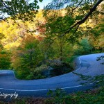 New England photography of Fall foliage in Vermont in Smuggler's Notch