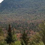 Views from the Kancamagus New Hampshire