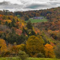 12 Oct Fall Foliage Report