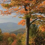Mount Greylock by John Burk, New England Photography
